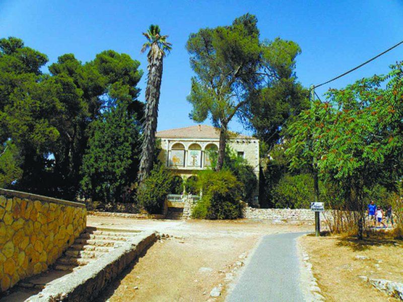מוזיאון הטבע בירושלים (צילום: עמרם כהן)