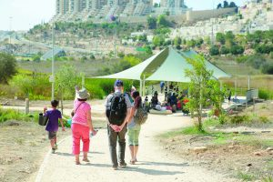 פארק עמק הצבאים (צילום: ארנון בוסאני)