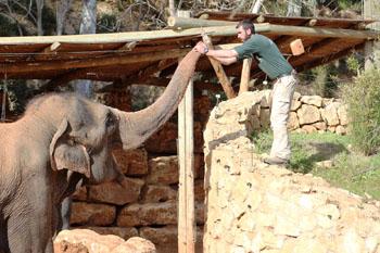 """גן החיות התנ""""כי (צילום: גן החיות התנ""""כי)"""