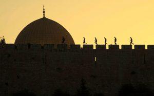 (צילום: Afif Hanna Amireh-Israel)