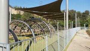 עמק הארזים בפארק ירושלים (צילום: מיכל פישמן-רואה)