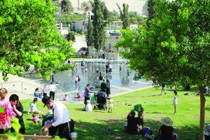 פארק טדי (צילום: ארנון בוסאני)