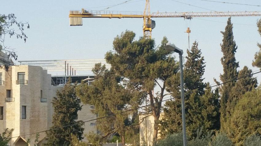 מלון ענבל שיפוצים (צילום: עדי זורע)