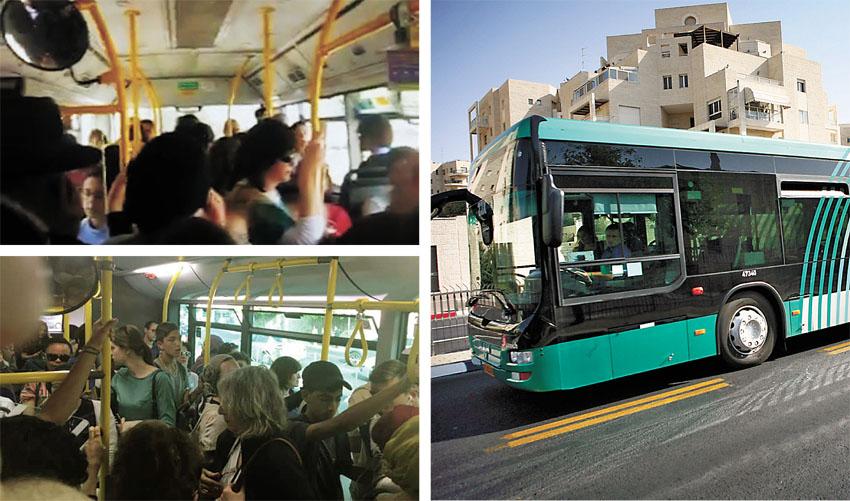 אוטובוסים בעיר (צילומים: מיכל פתאל, אלון קאס)