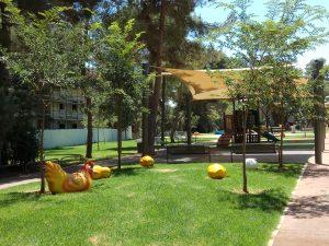 גן אפרסמון (צילום: מיכל פישמן-רואה)