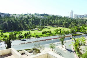 גן סאקר (צילום: אורן בן-חקון)