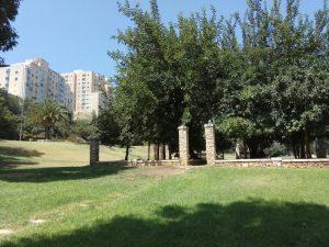 פארק דניה (צילום: מיכל פישמן-רואה)