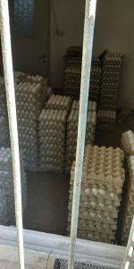 ביצים מוברחות נתפסו במרכז העיר (צילום: דוברות המשטרה)