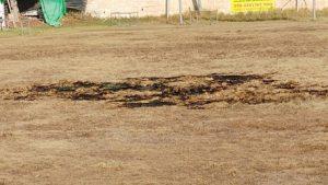 האורווה בקרית היובל (צילום: ארנון בוסאני)