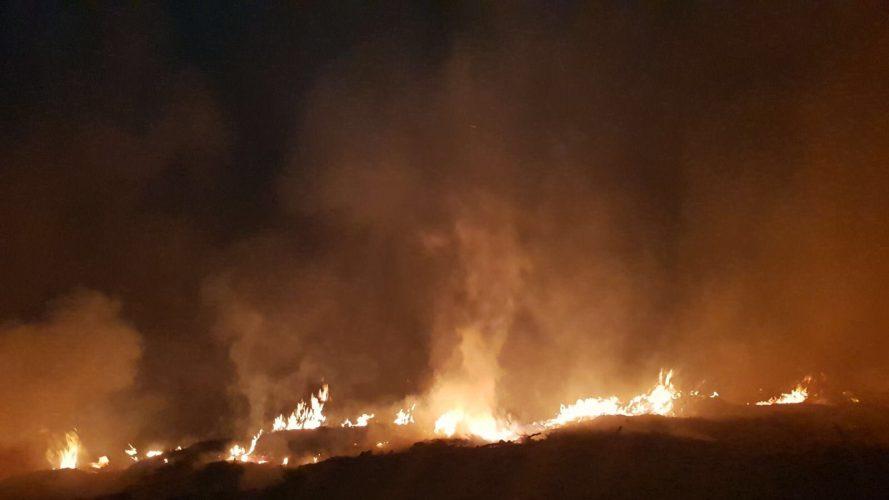 שריפת החורש בסטף (צילום: כבאות והצלה)