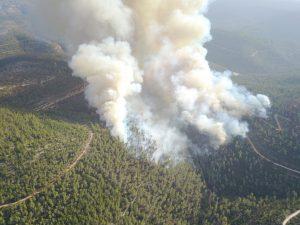 שריפה בסטף (צילום: דוברות המשטרה)