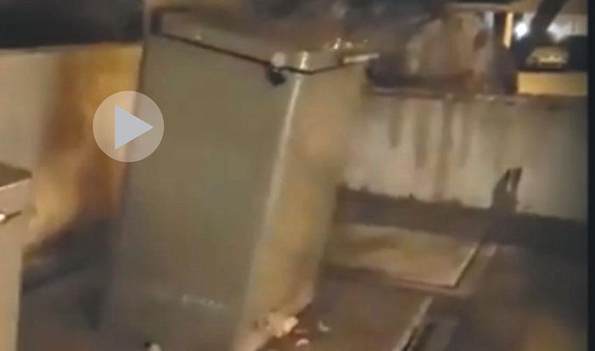 חילוץ חתול מפח אשפה מוטמן בארמון הנציב