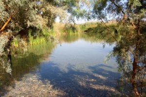 """שמורת טבע עיינות צוקים (צילום: יח""""צ)"""