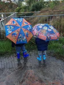 גשם (צילום: מיכל פישמן-רואה)
