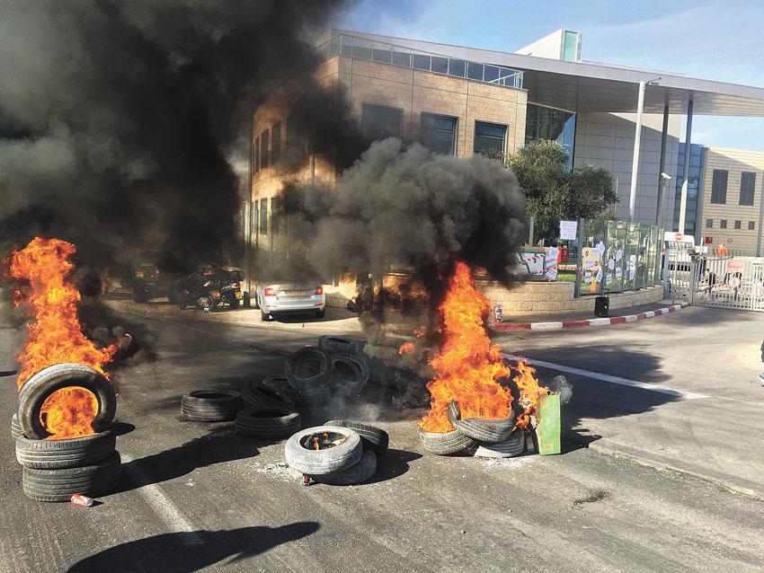 מחאת עובדי טבע, השבוע (צילום: מושיקו בצלאל)