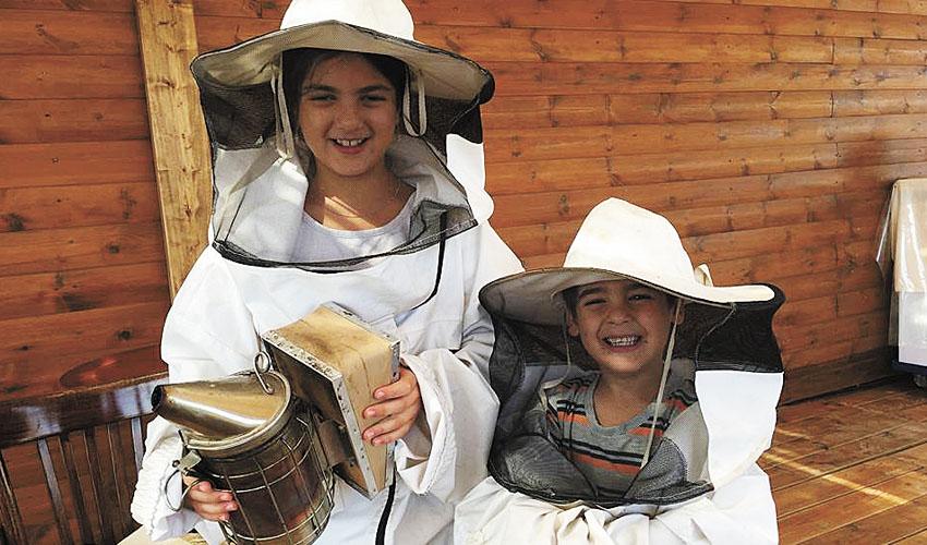 פעילות ילדים בכוורת (צילום: עצמי)