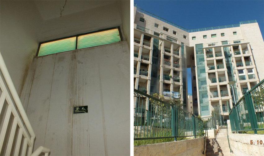 הבניינים ברחוב לנקין, רטיבות בחדר המדרגות (צילומים: פרטי)
