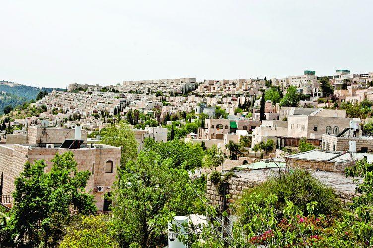 שכונת מלחה (צילום: מגד גוזני)