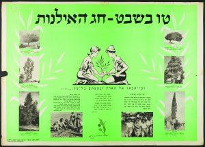 """כרזת ט""""ו בשבט של קק""""ל, תחילת שנות ה-50 (צילום: י""""חצ הספרייה הלאומית)"""