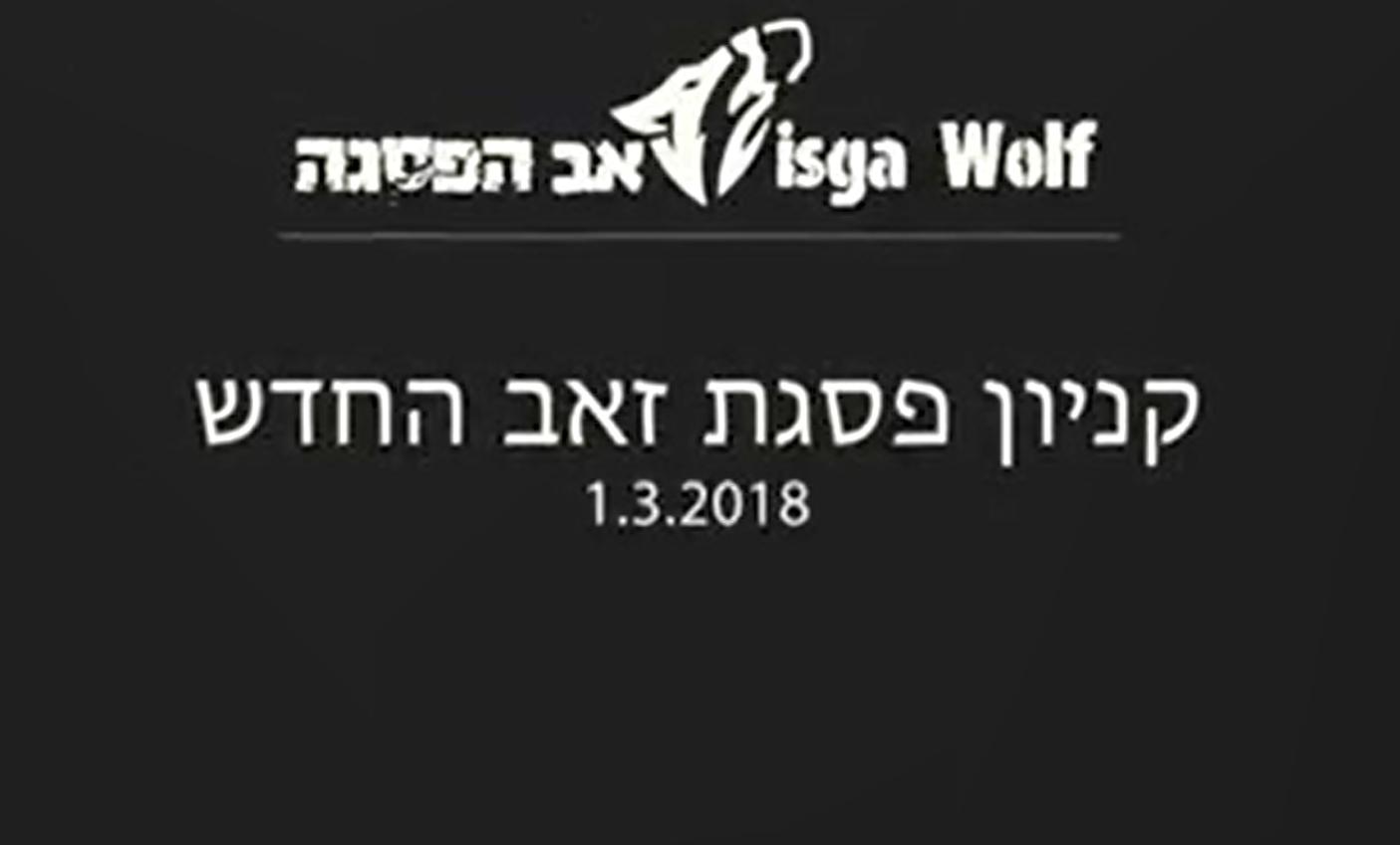 וידאו – פסגת זאב: יוזמה קהילתית-חברתית לפתיחת קניון וירטואלי