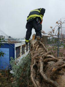 """העף שקרס על גדר בית הספר תל""""י גילה (צילום: אריק אבולוף-כבאות והצלה ירושלים)"""