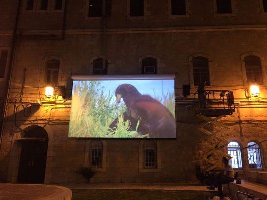 """קולנוע רחוב (צילום: בנצי שמש, מנכ""""ל פתרונות סולאריים)"""