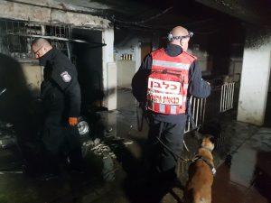 שריפה בקטמון (צילום: דוברות כבאות והצלה ירושלים)