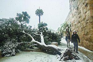 סופת השלג בירושלים 2013 (צילום: אוליבייה פיטוסי)