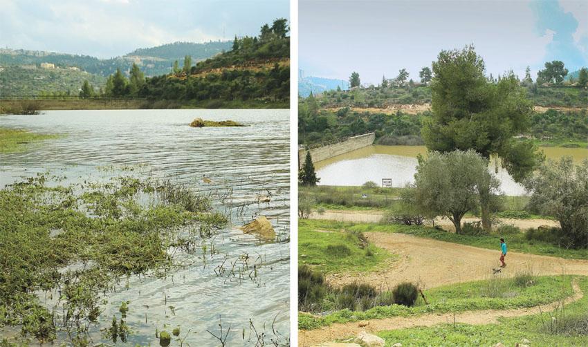 סכר בית זית (צילומים: ארנון בוסאני)