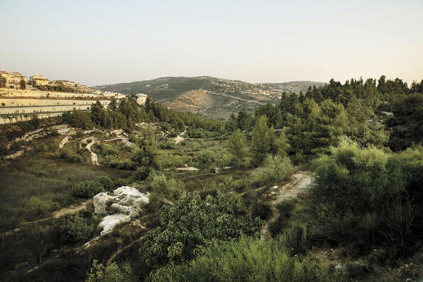 רכס לבן (צילום: אוליבייה פיטוסי)