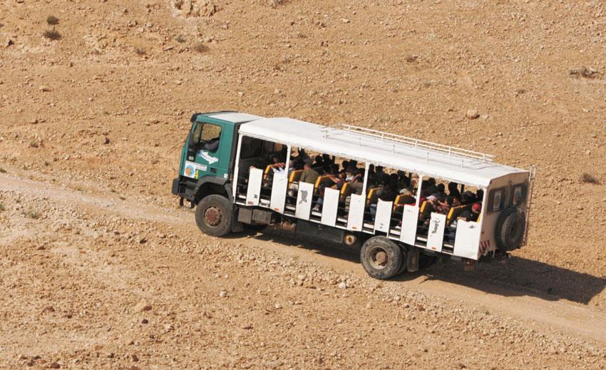 טיול ספארי במדבר יהודה (צילום באדיבות תיירות בנימין)