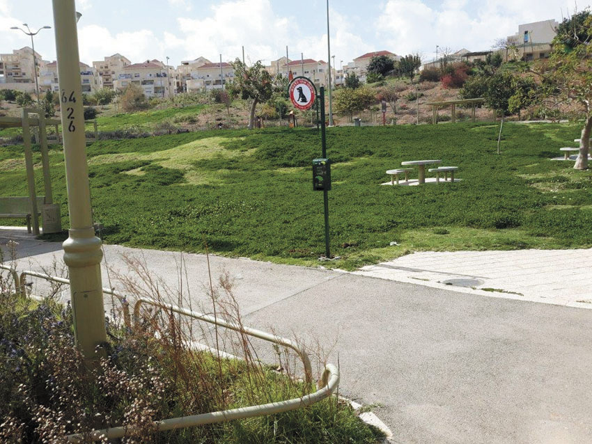 מתקני השקיקקי שהותקנו ברחבי העיר (צילום: עיריית מעלה אדומים)