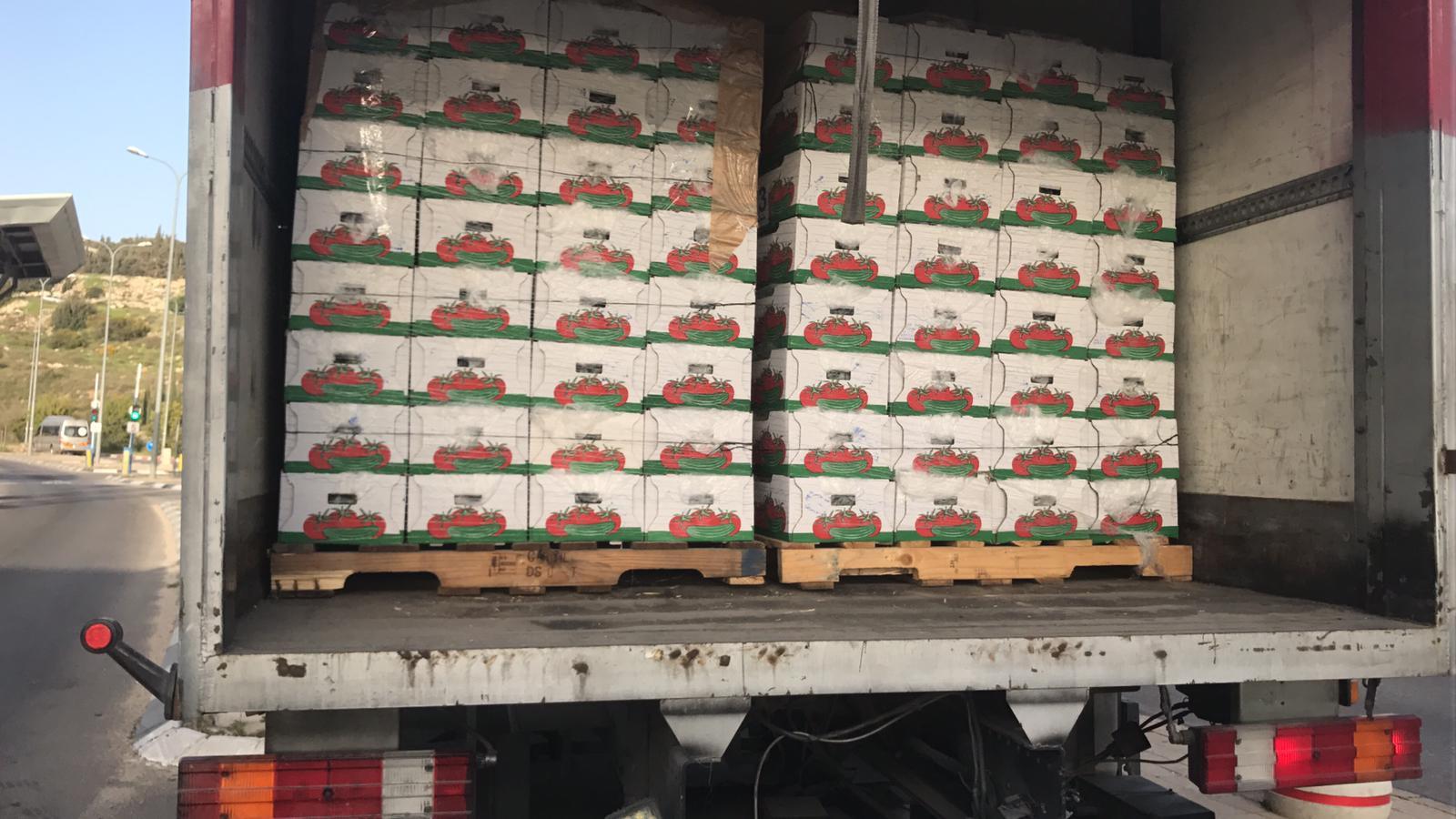 הירקות שנתפסו על ידי מפקחי משרד החקלאות (צילום: דוברות משרד החקלאות)