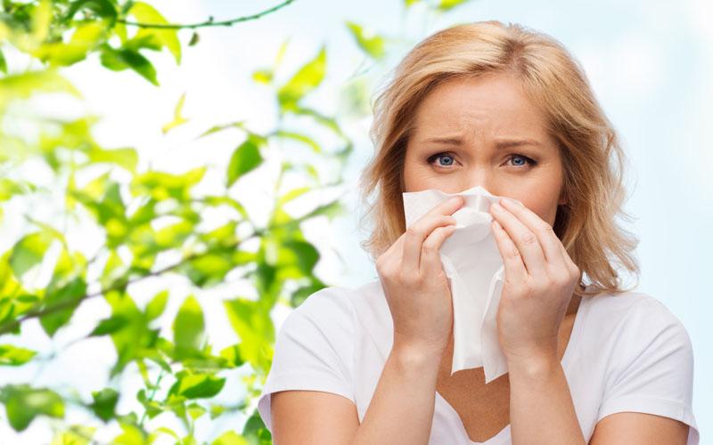 אילוסטרציה אלרגיה (צילום: א.ס.א.פ-קריאייטיב)