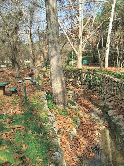 גן לאומי עין חמד (צילום: יואב גרינברג)