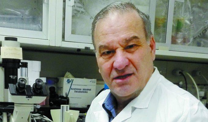פרופ' רפי גורודצקי (צילום: דוברות הדסה)