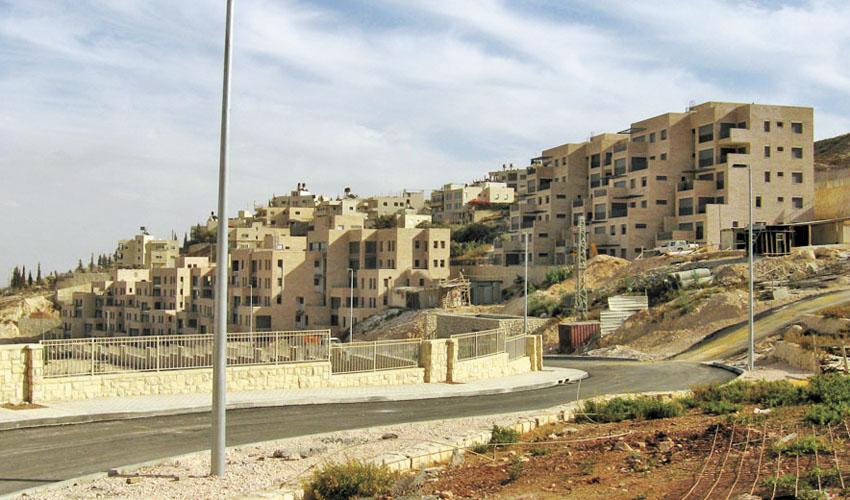 שכונת נוף ציון (צילום: Tamarah)