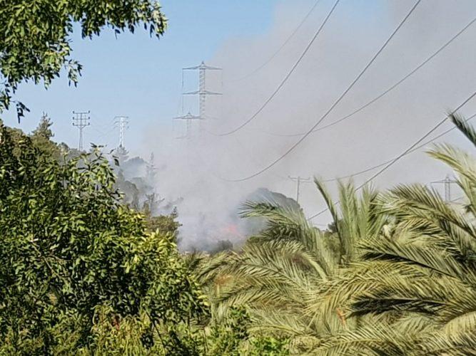 """השריפה סמוך לגן החיות התנ""""כי (צילום: דוברות כבאות והצלה ירושלים)"""