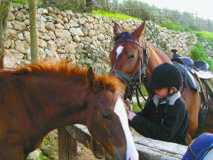 מחנה רכיבה (צילום: באדיבות חוות סוסים סבא ג'ק)