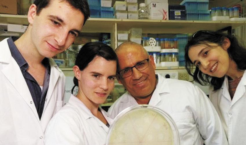 פרופ' רונן חזן וצוות המיקרוביולוגים (צילום: רן צברי)