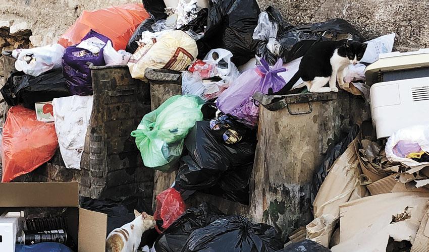אשפה השבוע בראס אל עמוד (צילום: פפה אללו)