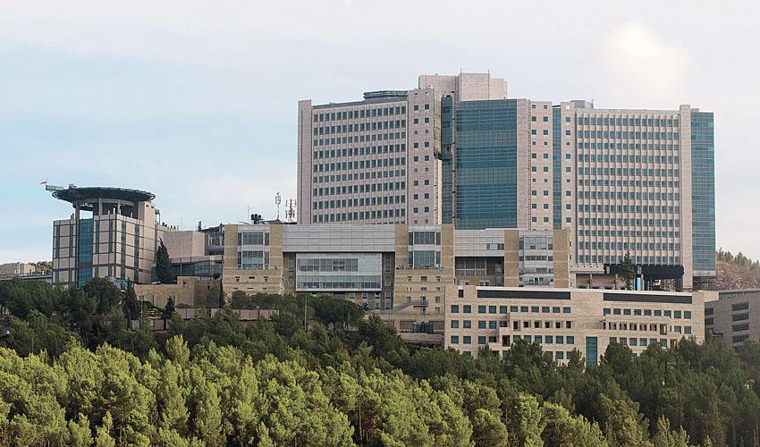 המרכז הרפואי הדסה עין כרם (צילום: אבי חיון)