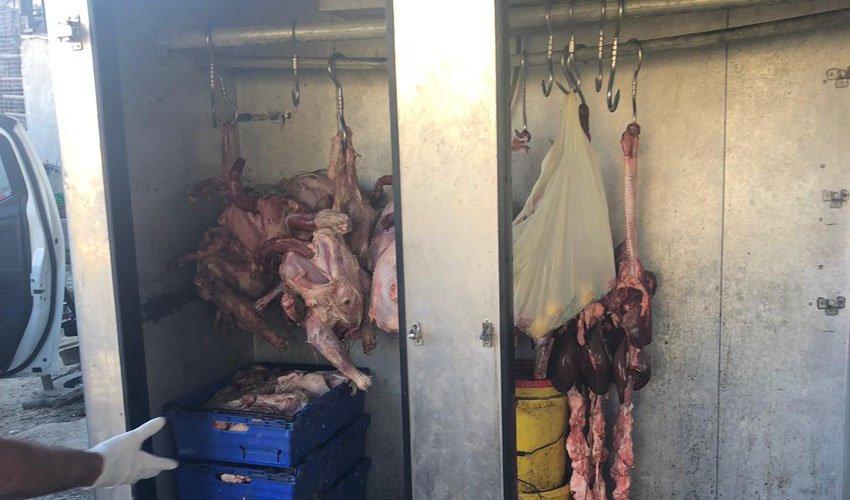 הבשר הרקוב שנתפס בג'אבל מוכאבר (צילום: אגף האכיפה והשיטור עיריית ירושלים)