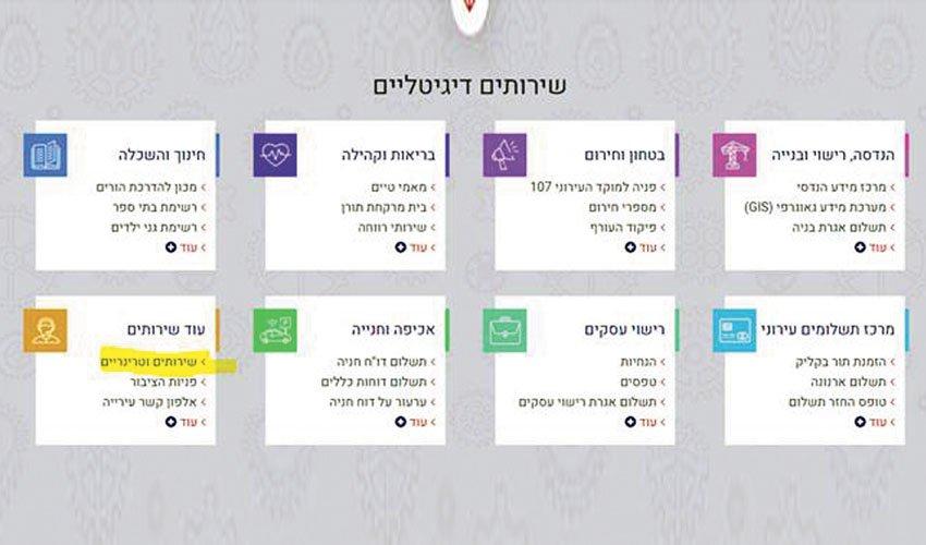 צילום מסך של אתר האינטרנט של עיריית מעלה אדומים (צילום: עיריית מעלה אדומים)