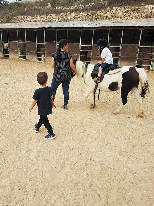 חוות סוסים יהודה עלפי (צילום: פרטי)