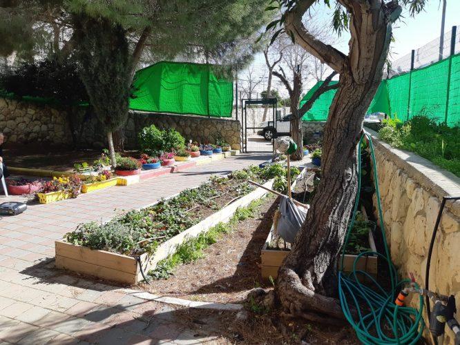 גן הניסויי בארמון הנציב (צילום: פרטי)