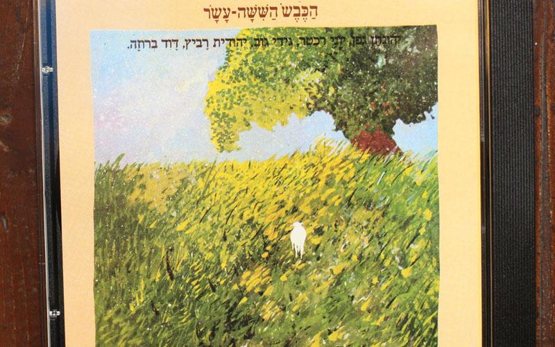 עטיפת דיסק 'הכבש השישה עשר' (צילום: דודו בכר)