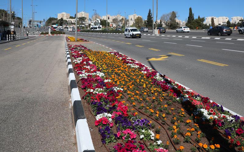 שדרות חיים ברלב (צילום: שלומי כהן)