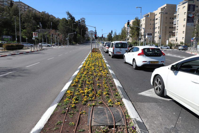 רחוב יעקב גולומב (צילום: שלומי כהן)