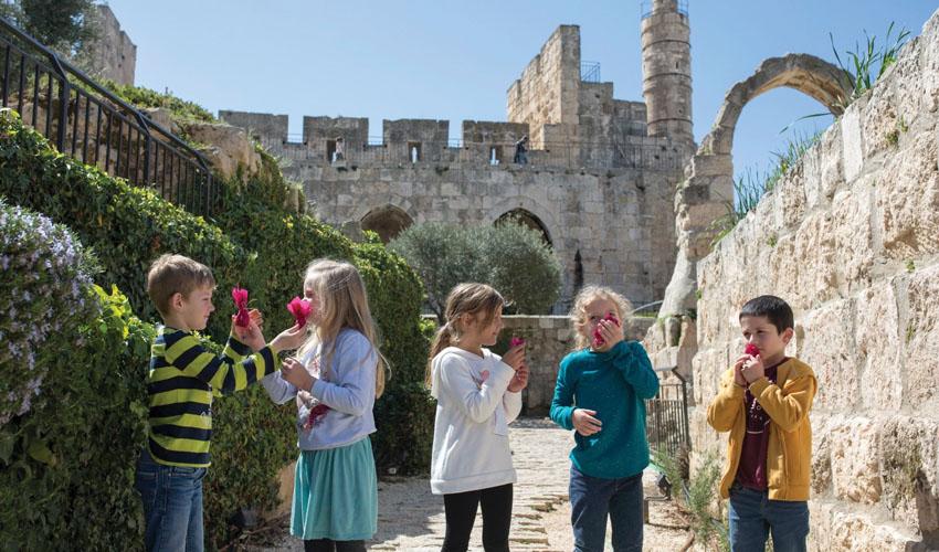 מגדל דוד (צילום: ריקי רחמן)